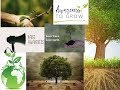 Awareness of surroundings stop cutting tree conversation biodiversity protect forest to save life