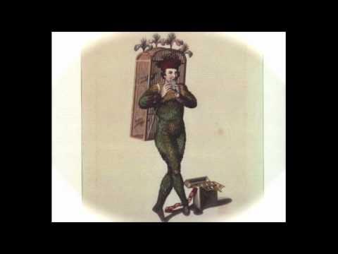 Wolfgang Amadeus Mozart: Magic Flute ~ Papageno's Aria