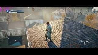 Assassin's Creed Unity on OC R9 290 TRi X