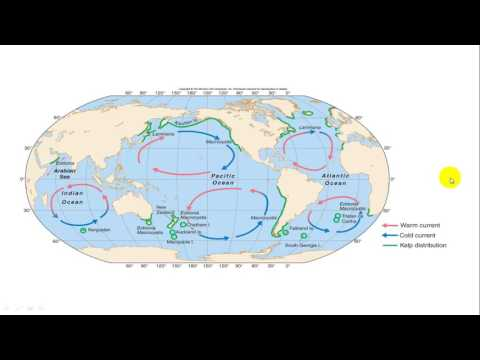 Continental Shelf and Coral Reefs