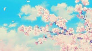 kudasai - when i see you
