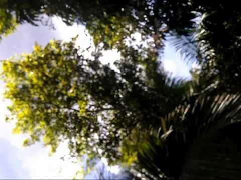 My Belizean Adventure