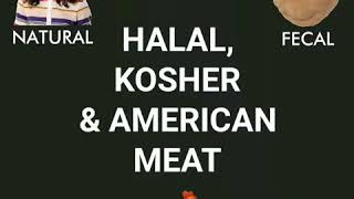 Tribe News Now: Eat Halal & Kosher over American Meat