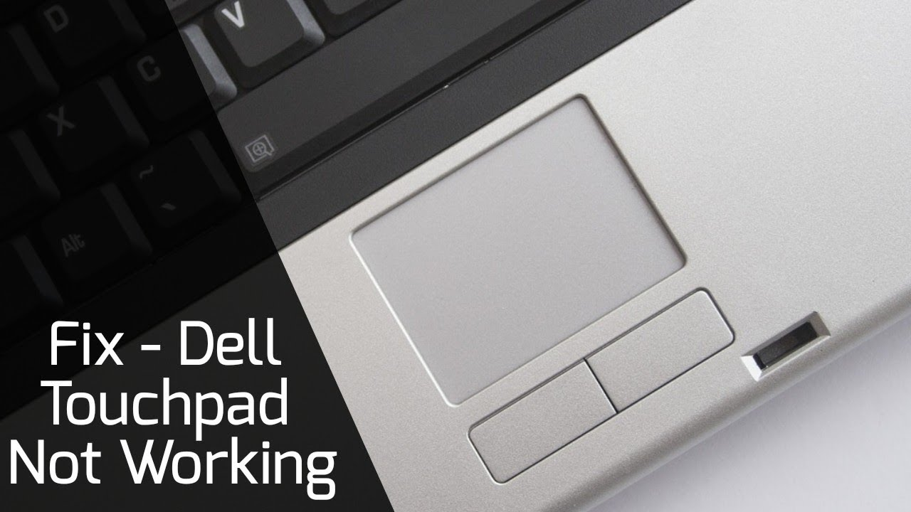 How to Fix Dell Laptop Touchpad not working