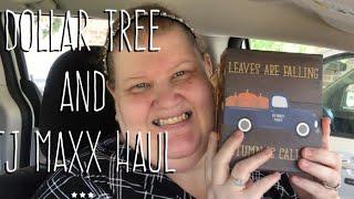 Dollar Tree and TJ Maxx Haul