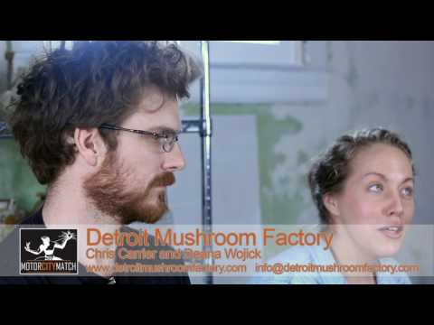 Small Biz Stories: Detroit Mushroom Factory