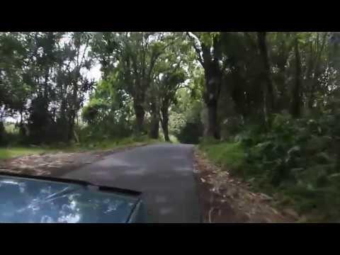 Driving Through Pahoa-Kapoho Road