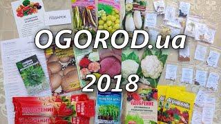 Ogorod.ua на сайті я насіння (2019-го сезону)