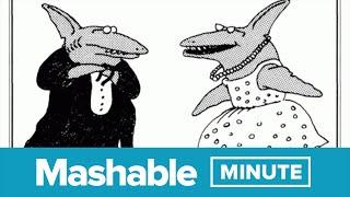 Avoid Shark Sex -- Seriously | Mashable Minute | With Elliott Morgan