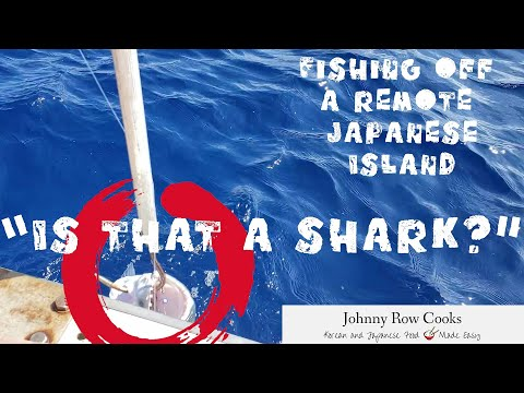 Fishing Off A Remote Japanese Island - Iriomote, Okinawa  | Johnny Row Cooks