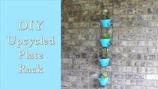 Diy Upcycled Plate Rack In To A Wall Planter