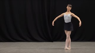 Insight: Ballet Glossary - Pas de chat