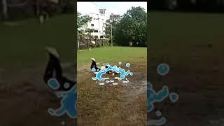 What a dive catch! #AakshVani #Cricket