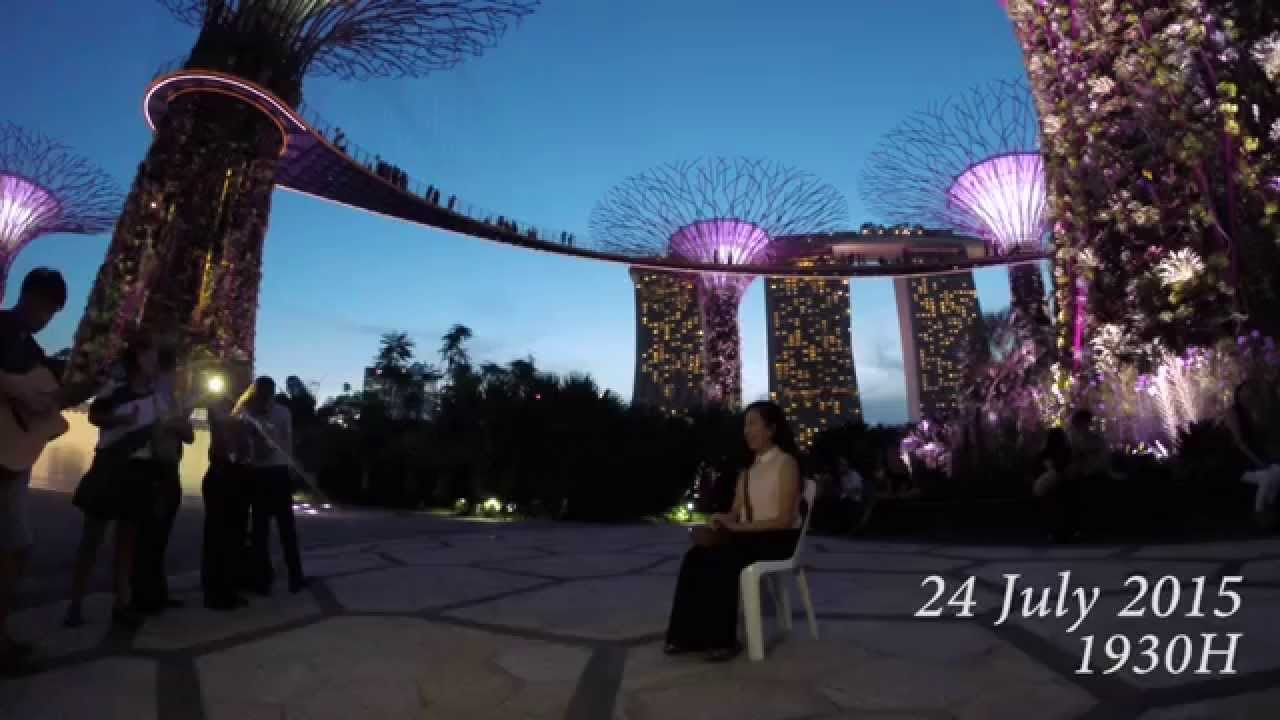the proposal hazel jun yang gardens by the bay singapore 24715