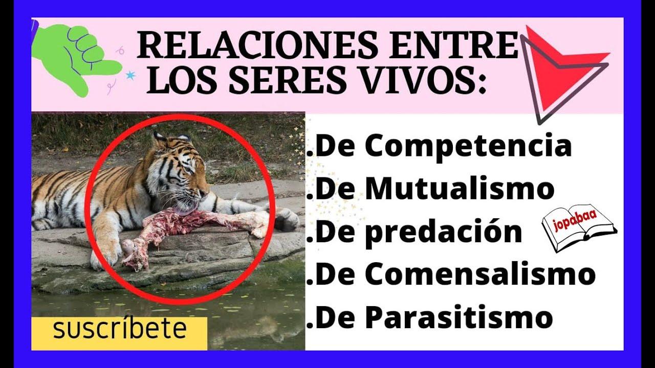 que es competencia depredacion y parasitismo