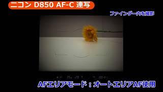 カメラのキタムラネットショップ「ニコン D850特集」もぜひご覧ください...