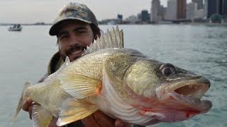 Fishing Walleye - Urban City Adventure
