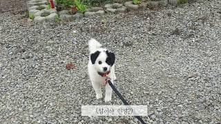 홍천 소담마실 관광농원…
