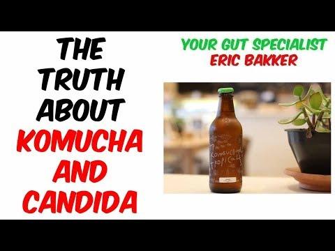 Is Kombucha Good For Candida Diet?