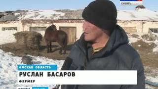 Омск и Казахстан могут поменяться землями
