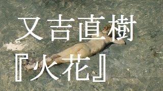 金曜どうがしょう #17 又吉直樹『火花』