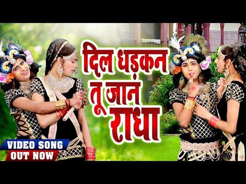 दिल-की-धडकने-तेज-कर-देगा-राधा-कृष्ण-का-प्यारा-भजन।-दिल-धड़कन-तू-जान-राधा-|-#hit_shyam_bhajan_2020