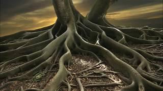 Feel Safe, Grounded, and Centered | Subliminal Healing Meditation & Isochronic Tones