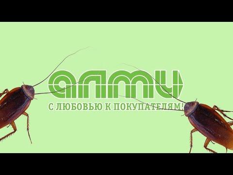 """""""В грязь лицом"""" или оршанский милиционер"""