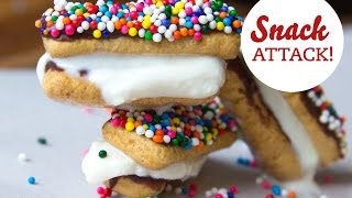 Snack Attack: S'mores Ice Cream Sandwiches