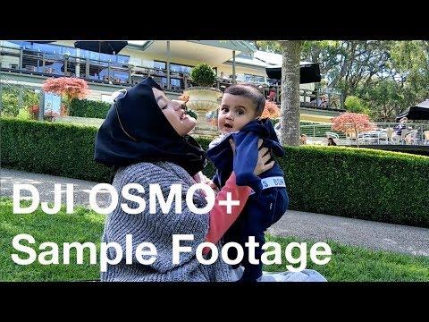 DJI OSMO+ Footage | Enchanted Adventure Garden - Mornington Peninsula, Melbourne