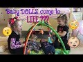 WHAAATT???!!! Can Baby Dolls Really Come to LIFE???? See what a MAGIC Wish can do!
