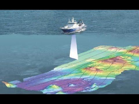 Marine Seismic Surveys and the Environment