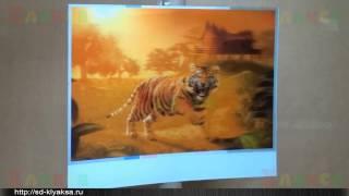 Урок 4 - Кодирование и печать стерео картинки