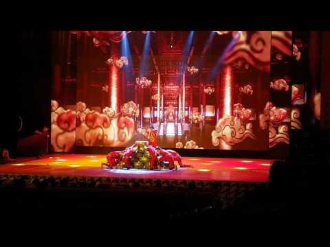 السرك الصيني Chinese Circus  中国杂技团