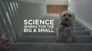 Alister Austin - Hills™ Science Plan™ It All Starts with Science