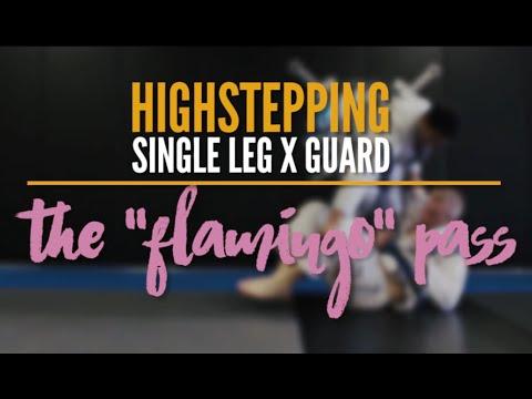 Passing the Single Leg X Guard || The