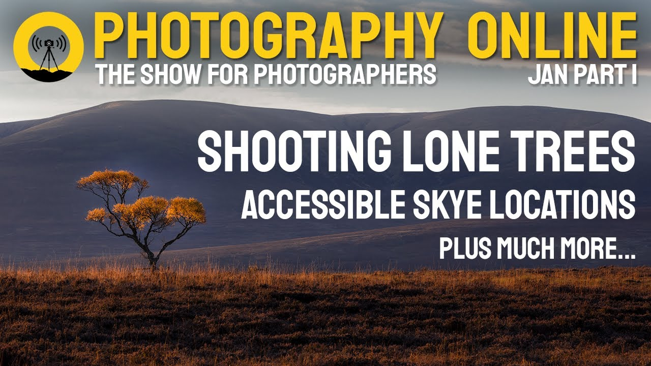 Photography Online January 2021 (part 1) - Lone trees and golden eagles