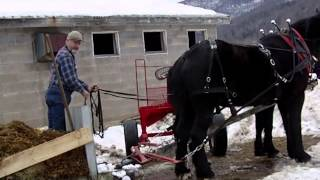 Cleaning barn with bob sled  Feb 20 2014