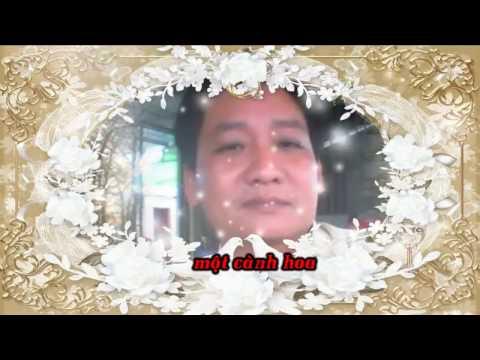 AI LEN XU HOA DAO - karaoke