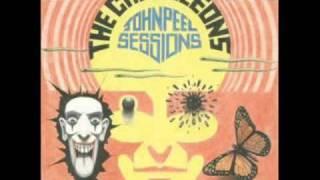 The Chameleons - P.S. Goodbye (John Peel Sessions)