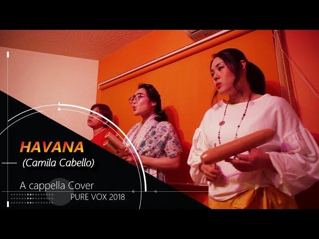 【洋楽カバー アカペラ】Havana ft.Young ThugーCamila Cabello/A cappella Cover