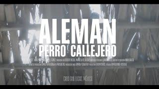Смотреть клип Alemán - Perro Callejero