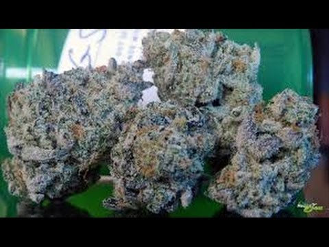 smoking girl scout cookies 4 20   youtube