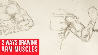 Drawing Arm Muscles In 2 Ways