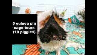 Brand New Cage Tours: 5 Guinea Pig C&C Cages