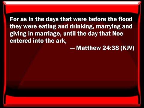 WHO IS EATING, DRINKING, MARRYING; NOAH'S DAY - MATT-LUKE-