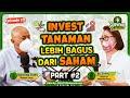- Invest Tanaman Lebih Bagus Dari Saham PART 2  - SURVIVAL TALK EP 111