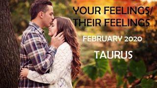 TAURUS:  YOUR FEELINGS/THEIR FEELINGS- FEBRUARY 2020