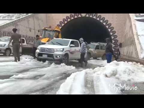 Saudi Arab news today ! snowfall in taif city !