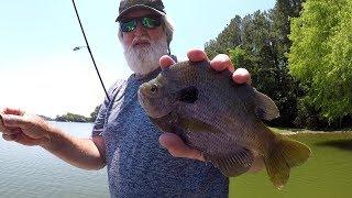 HUGE BLUEGILL!!! Bluegill Fishing With Jigs